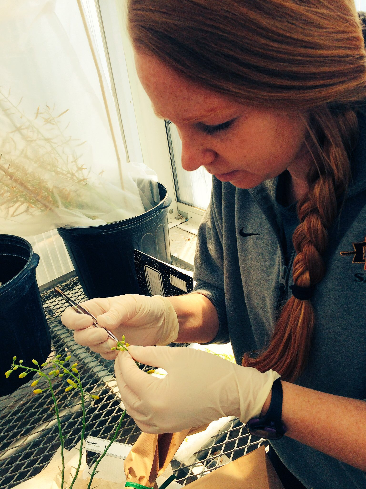 I'm an #actuallivingscientist studying how plants are related to one another. While doing so I always #DressLikeAWoman! https://t.co/glg0MLawiC