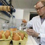 Ireland confirms sixth case of bird flu