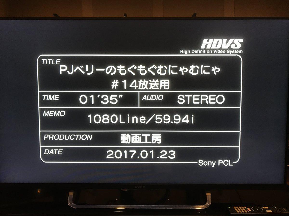 【本日放送】アニメ「PJベリーのもぐもぐむにゃむにゃ」第14話が今夜のフジテレビ『#ハイ_ポール』内で放送されます!普段