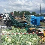Woman killed in fruit and veg truck crash