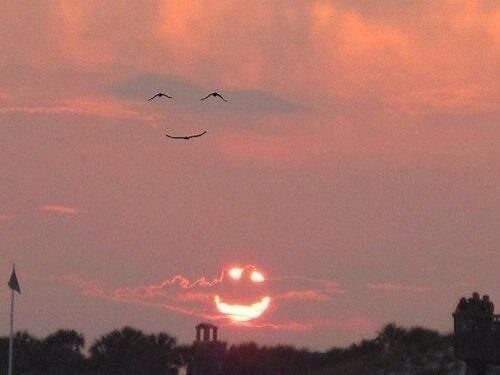 Nature is beautiful. When the sun smiles, the birds smile back! https://t.co/i6Cq7uvtL9