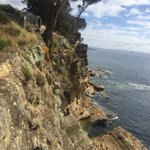 Family, friends 'distraught' at Tasmanian teen's cliff fall death