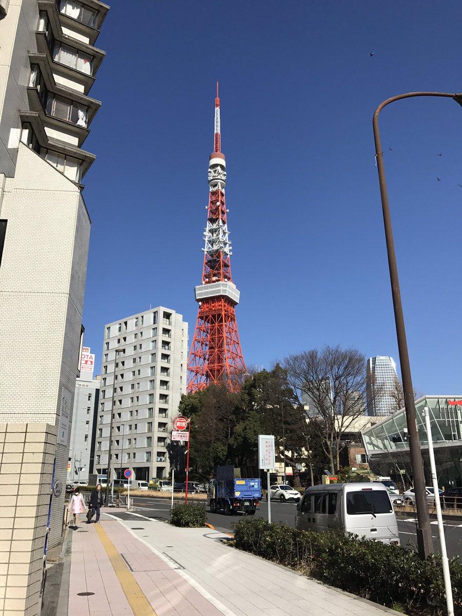 東京タワーを見るとつい写真撮っちゃう。うどんの国から上京して何年も経ったはずなのに、まだまだおのぼりさん気分が抜けきれて