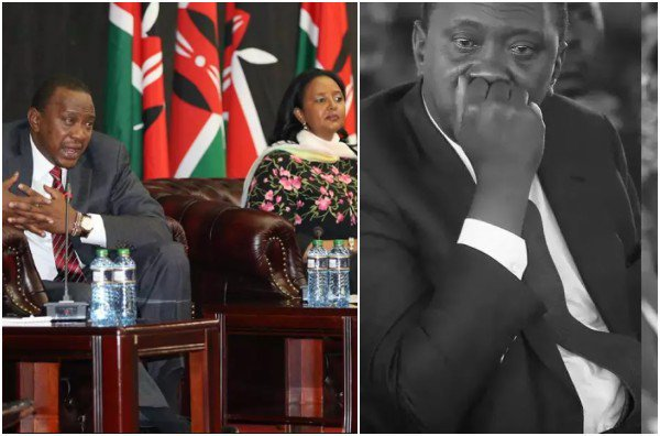 Amina AUC chairperson candidature was President Uhuru Kenyatta's personal investment - MP