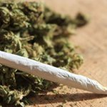 Police arrest three over 2.5kg cannabis find