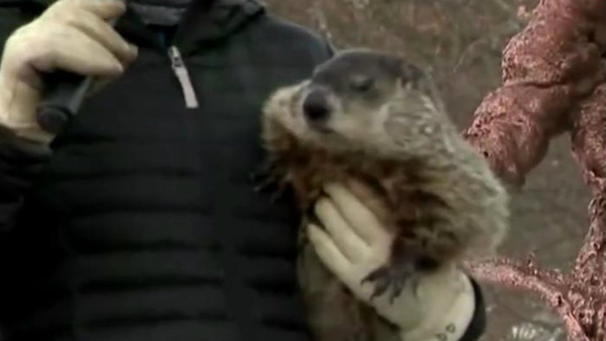 Michigan's Woody the Woodchuck predicts 6 more weeks of winter