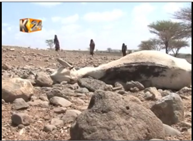 Kajiado County Government supplies relief food to residents to avert the effects