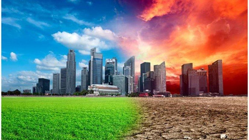 экологические картинки обж