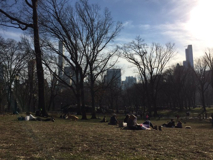 Pre-Spring in Central Park. 62 degrees and Aprilish