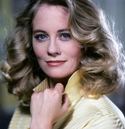 CYBILL SHEPHERD  HAPPY BIRTHDAY  67 today Taxi Driver 1976 The Last Picture Show 1971 Moonlighting 1985-89