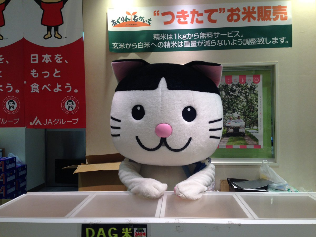 魔女の宅急便秋田ver RT : お米販売所でバイトしているニャジロウが可愛いすぎる件
