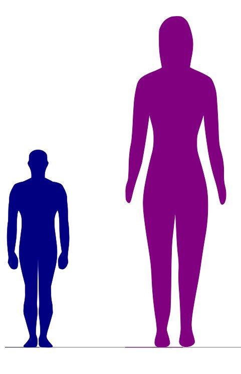 星くん(105㎝)と斬美ママ(176㎝)の身長差が軽い進撃の巨人みたいになってる