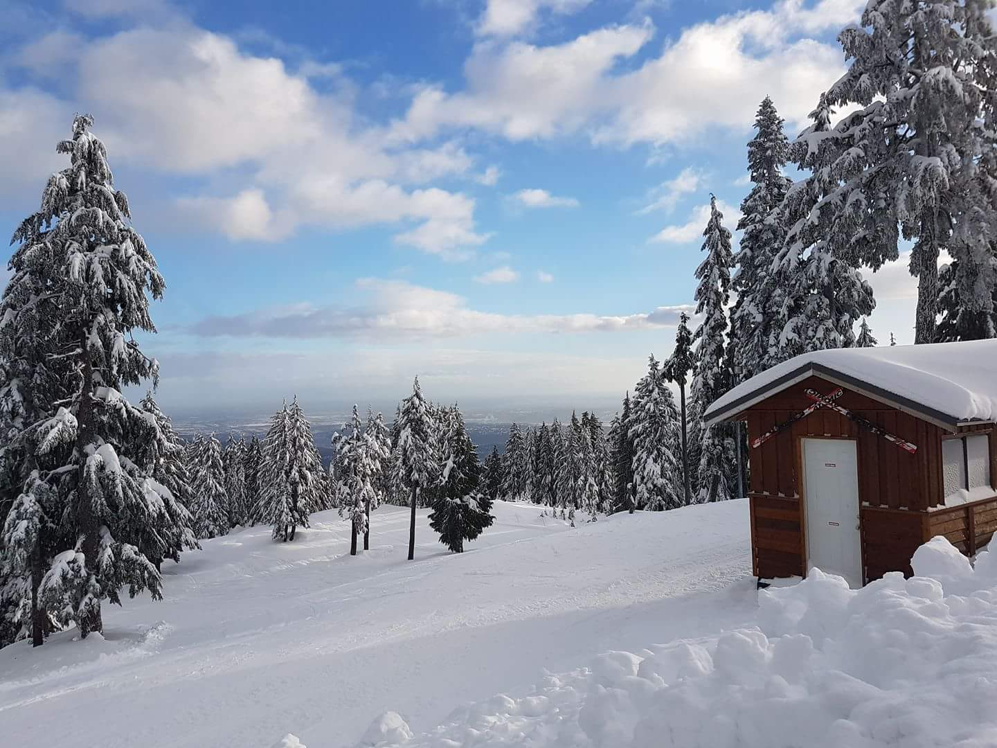 12cm of fresh snow in the last 24hrs, clear skies and soft packed conditions...Winterwonderland Alert up here! #mtseymour #snow #powder https://t.co/0V0dOpbw5u