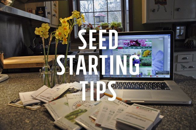 Winter Seed Starting Tips, Indoors and Out #growing https://t.co/WtBTpzXWKz https://t.co/B0D7yP7APX