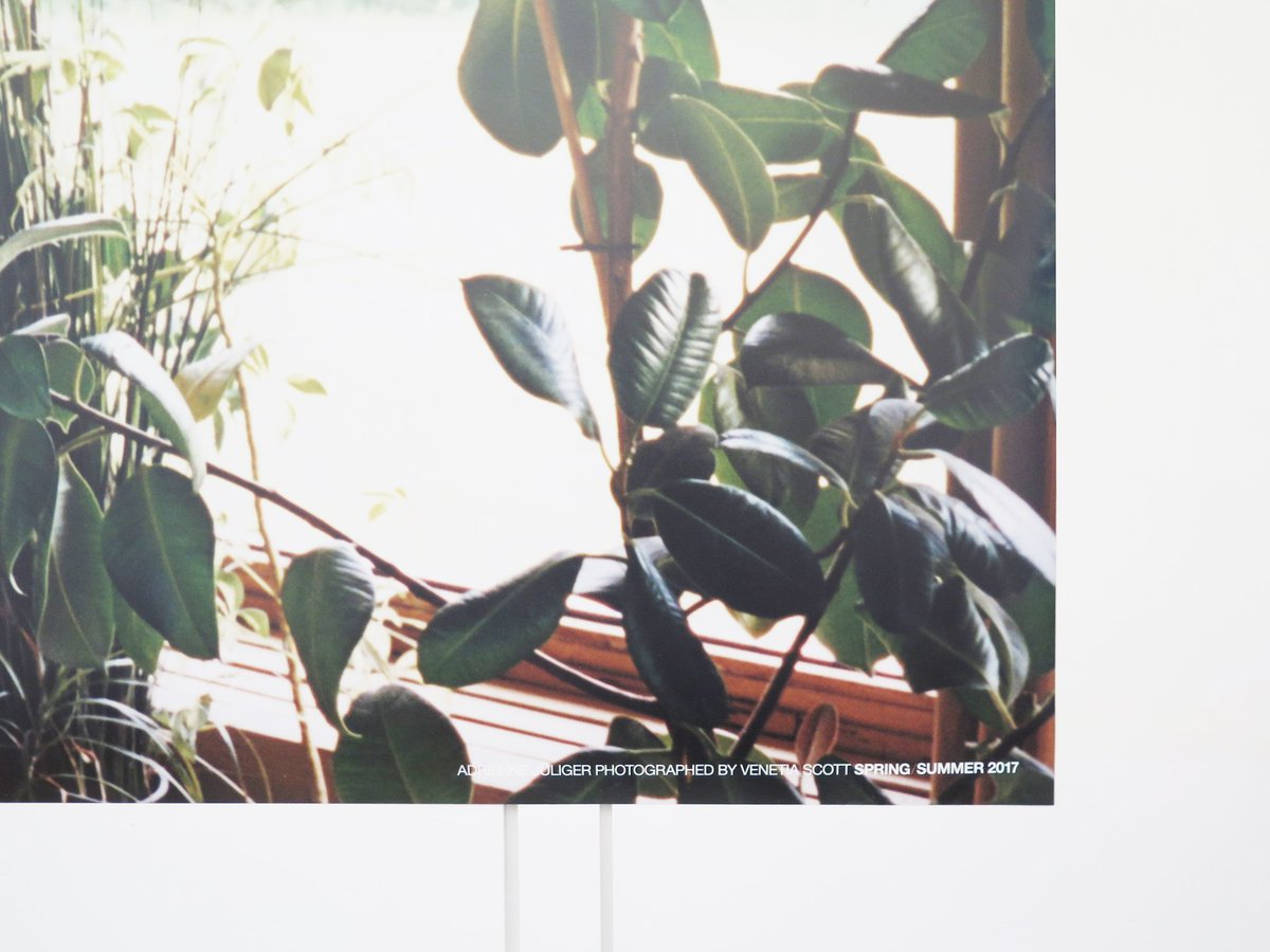 #APC 2017年 春コレクション キャンペーンビジュアル スタジオ / パリ マダム通り https://t.co/6LtF8kjd8Y