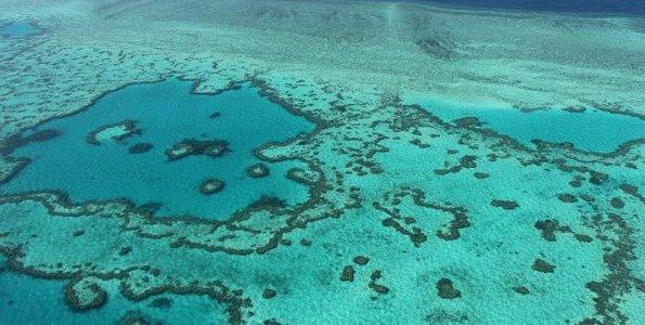Scientists find huge ancient landslide on Great Barrier Reef
