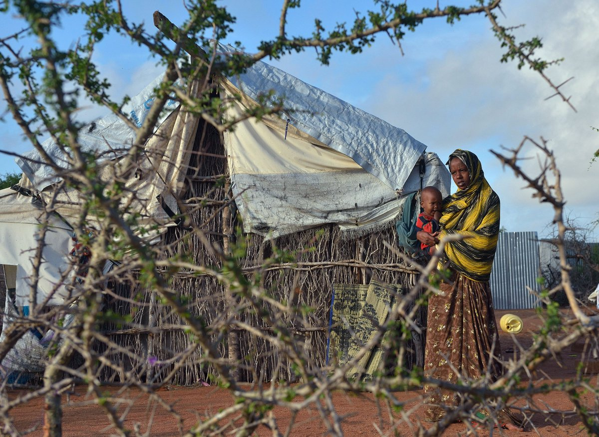 How Trump's travel ban left Somali refugees stranded in Kenya, just as camps were closing