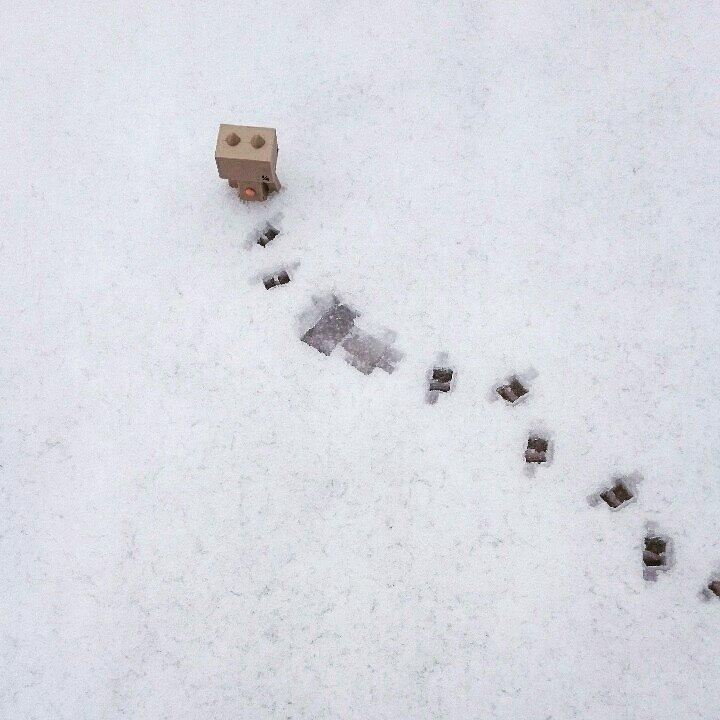 雪でコロンでも平気にゃ!#ダンボー#ニャンボー#にゃんぼー#ダボニャ#雪#danbo#nyanbo#dabonya