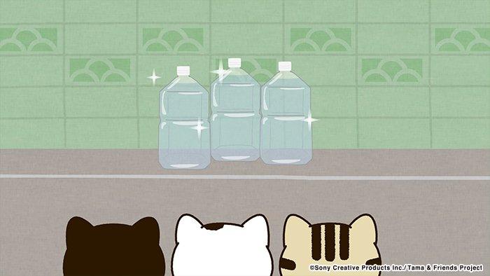 アニメ タマ&フレンズ~うちのタマ知りませんか?~ 今日のお話は「ペットボトルなんか怖くない!」トラには、ネコよけペット