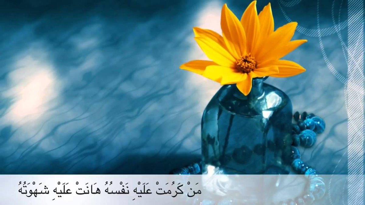 #حكمه_اليوم: #حكمه_اليوم