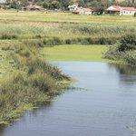 Battleground to preserve SA's water resources