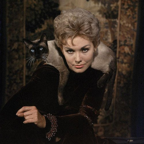 Happy Birthday, Kim Novak! Born 84 years ago today, Feb. 13,...