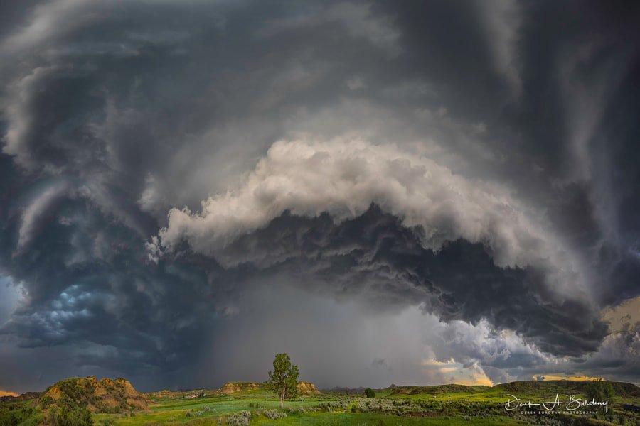 Danger Looms Overhead by Derek Burdeny https://t.co/4q29jgTm9p