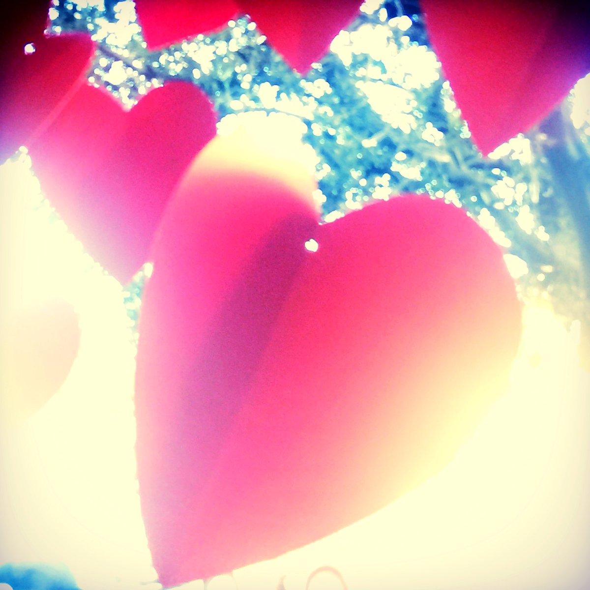 Follow your heart...it knows what's up. Happy Valentine's Day ❤ https://t.co/ItZyrxq2ND