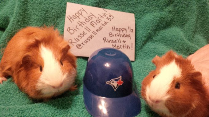Happy 34th Birthday and a Happy 1/2 birthday to our piggies Russell & Martin!!