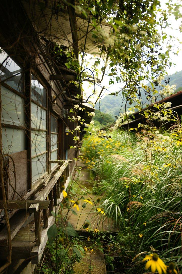 マヨイガの庭昨年夏に撮影初めて廃墟でお会いした人影教えていただいた楽園教えていただいた志雨の匂い#廃虚#写真好きな人と繋