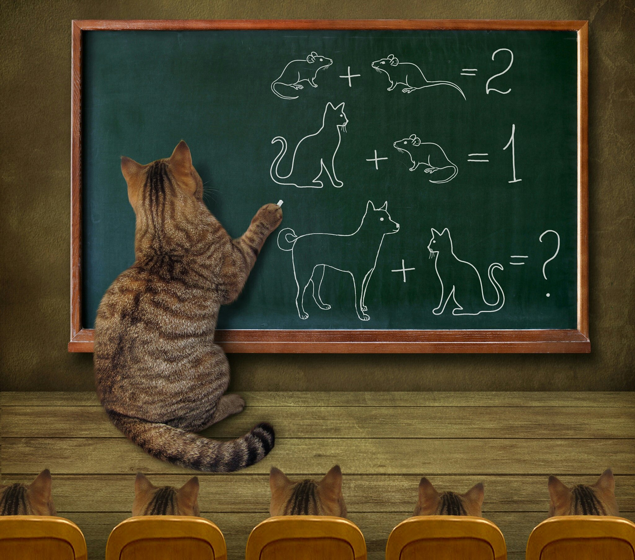 For everyone  who loves #kitty #cats   Cat teacher and his pupils... :) by Irina Kusnetsova https://t.co/2p3QuDoJbR