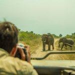 MAP: Great Limpopo Transfrontier Park expands conservation area to Kruger
