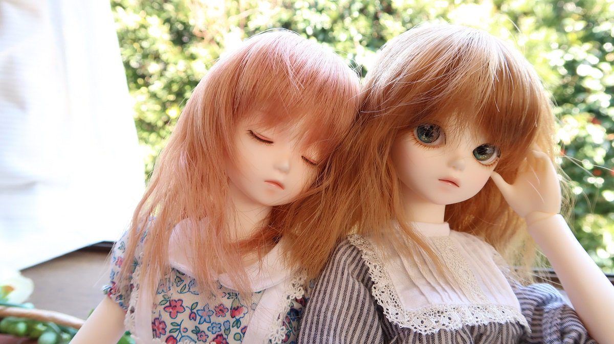 #うちのこかわいい#bluefairy#ドールオーナーさんと繋がりたい櫻子さん(オリーブ)とれち子さん(オリーブ)の仲良