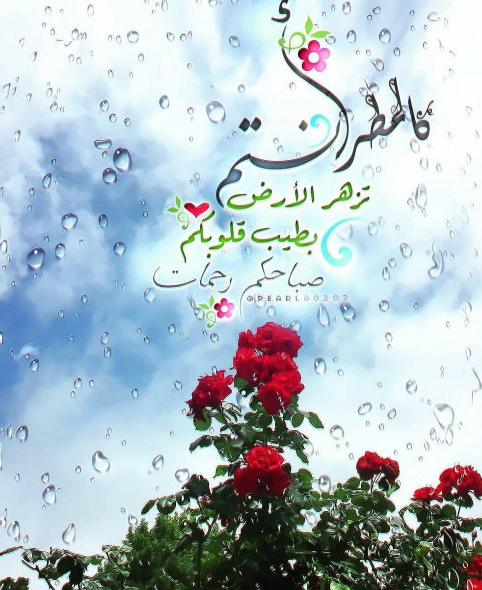 مطر الصباح