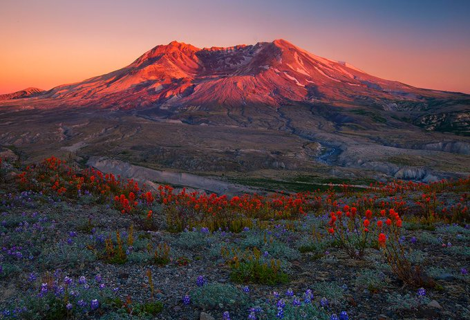 @PhotographyTalk: Mount St. Helens never looked so good!  https://t.co/lHm6dQfKam https://t.co/QyGOG7hh5C