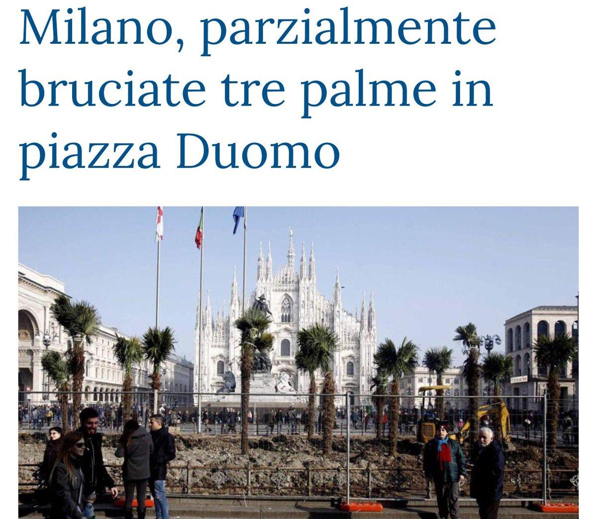 #palmeMilano