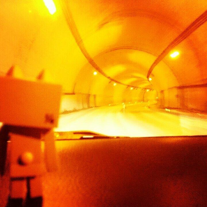 にゃがい、にゃがい トンネル#ダンボー#ニャンボー#ダボニャ#danbo#nyanbo#dabonya