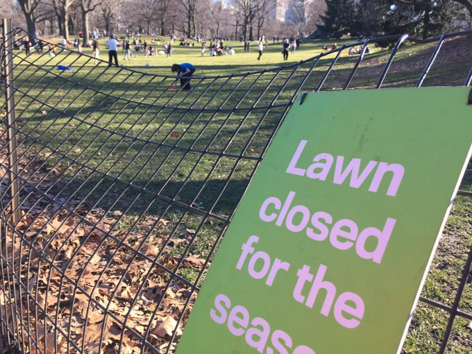 As the multitude of figures behind the sign should tell you, it was that kind of giddy anarchic day in Central Park