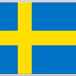 RT @StinkAirPDX: Last Night In Sweden: Everyone had healthcare. #LastNightInSweden https://t.co/YAbFsRsyxN https://t.co/NUni8IOeLm