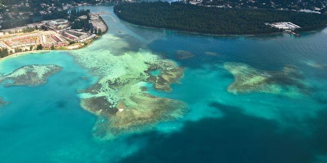 Menacées par la montée des eaux, les Seychelles soignent leur océan https://t.co/qierse5hjc
