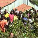 Shock as primary school teacher is killed in Kitale
