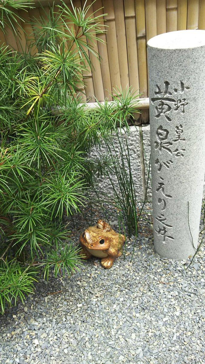 蛙の矢二郎が居るこの井戸。地獄と繋がっている、という謂れがあることに業を感じずにはいられない#有頂天 #有頂天家族 #京