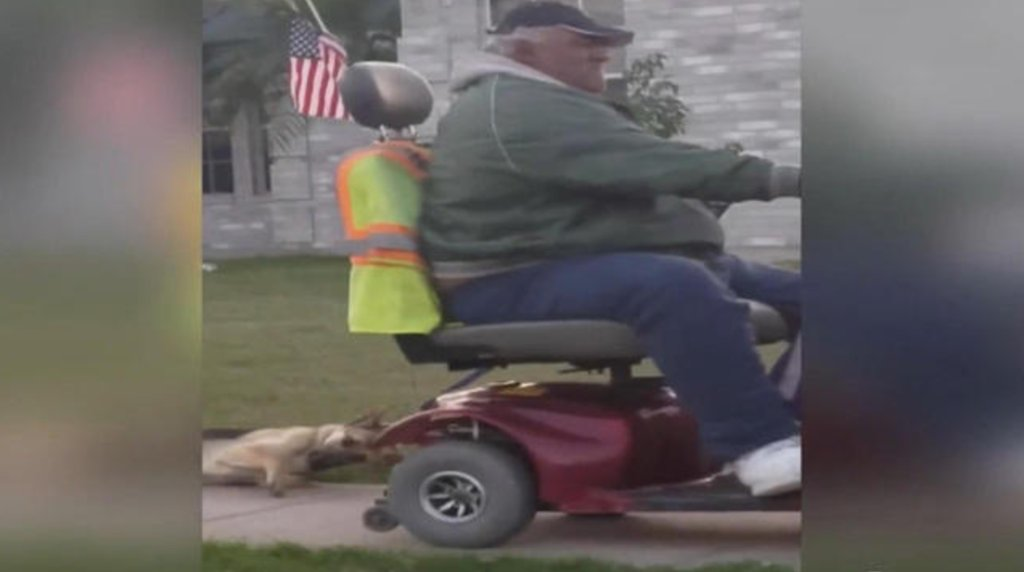 Disturbing video shows Texas man dragging dog behind motorized wheelchair: https://t.co/APjpNejoSn