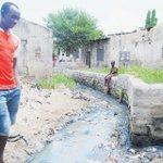 Why cholera has refused to go away