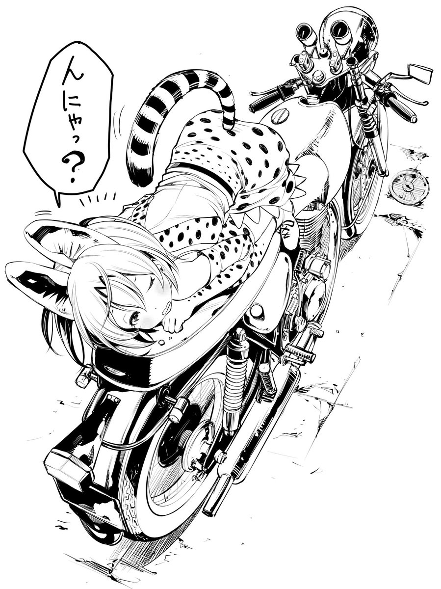 野良フレンズが、わたしのバイクの上でしょっちゅう寝ています。 暖かいのかなー。