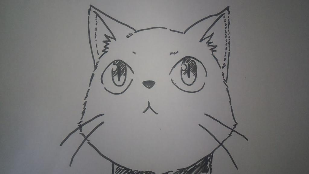 猫の日  チトさん 呼んでるよ~#猫の日  #ふらいんぐうぃっち