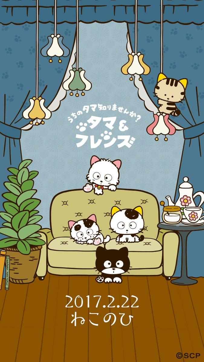 2月22日は猫の日♪うちのタマ知りませんか?タマ&フレンズ #猫の日 壁紙をプレゼント!こちらの画像を保存してく
