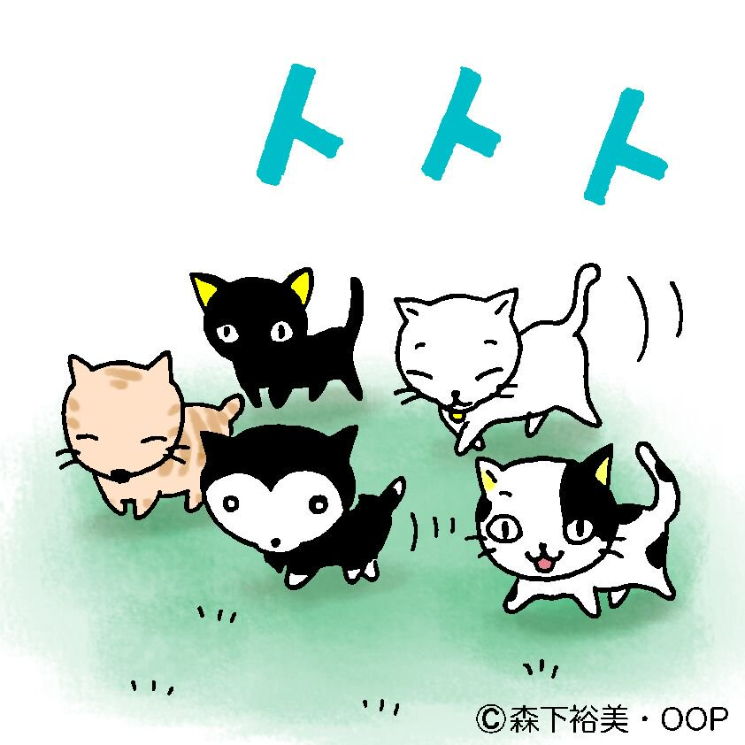 ニャーーーーー!#ネコの日 #猫の日 #少年アシベ #ゴマちゃん #ほぼcat