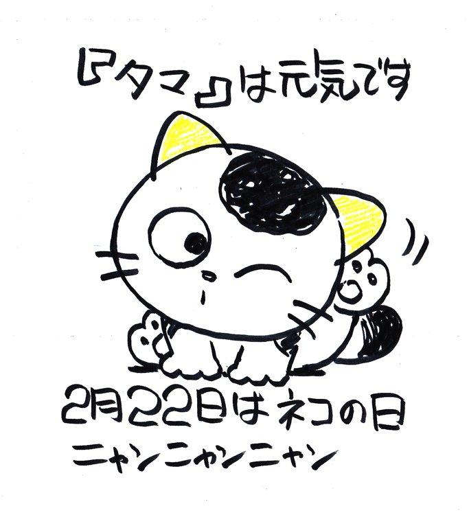 「2月22日は猫の日」ニャンニャンニャン♪ うちのタマ知りませんか?タマ&フレンズより  #猫の日