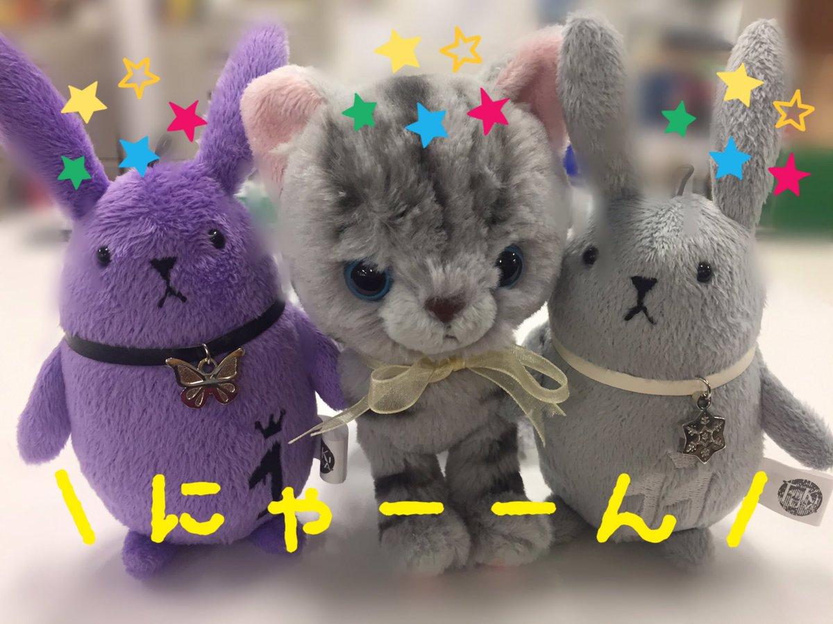 突然ですが……2月22日!今日は猫の日!\TLに颯爽と猫が!/ #猫の日 #ツキアニ